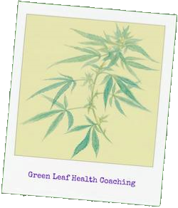 Green Leaf Health Coaching with Chloe Forfitt